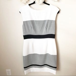 Sandra Darren White Striped Fitted Dress